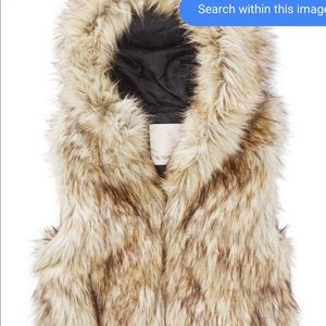 Aritzia faux fur vest (sunday best)